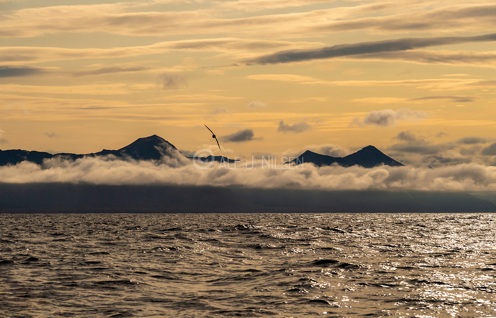 Midnight light off the coast of southern Spitsbergen, Svalbard, Norway in August.