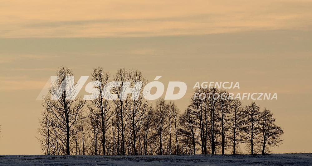 05.03.2013 Krynki woj podlaskie N/z zimowy pejzaz fot Michal Kosc / AGENCJA WSCHOD