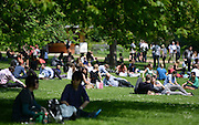 © Licensed to London News Pictures. 22/05/2012. London, UK People shade under trees and lie in the sun in Hyde Park. People enjoy the sunshine in London's Royal Parks today 22 May 2012. Photo credit : Stephen Simpson/LNP