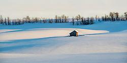 Rural snowscape, Ashton Idaho