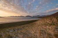Grassy sand dunes above Luskentyre beach, Isle of Harris, Outer Hebrides, Scotland