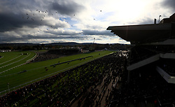 Foxtaial Hill ridden by Sam Twiston-Davies crosses the line to win the Randox Health Handicap Steeple Chase during day two of the Showcase at Cheltenham Racecourse