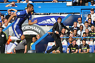 Antonio Conte, the Chelsea manager shouting at his players from the touchline. Premier league match, Chelsea v Burnley at Stamford Bridge in London on Saturday 27th August 2016.<br /> pic by John Patrick Fletcher, Andrew Orchard sports photography.