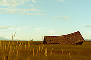 Collapsed barn in a field