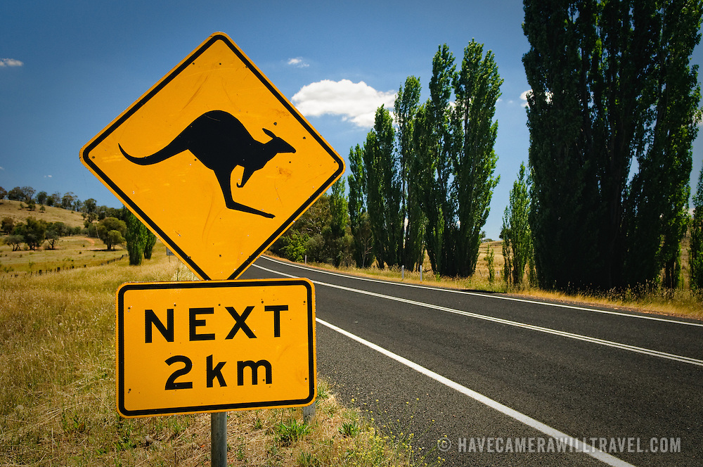 Australian outback sign of a Kangaroo crosssing