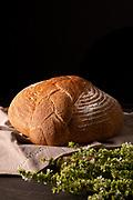 Fresh baked homemade bread and basil.