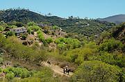 People Riding Horses Through Topanga Canyon