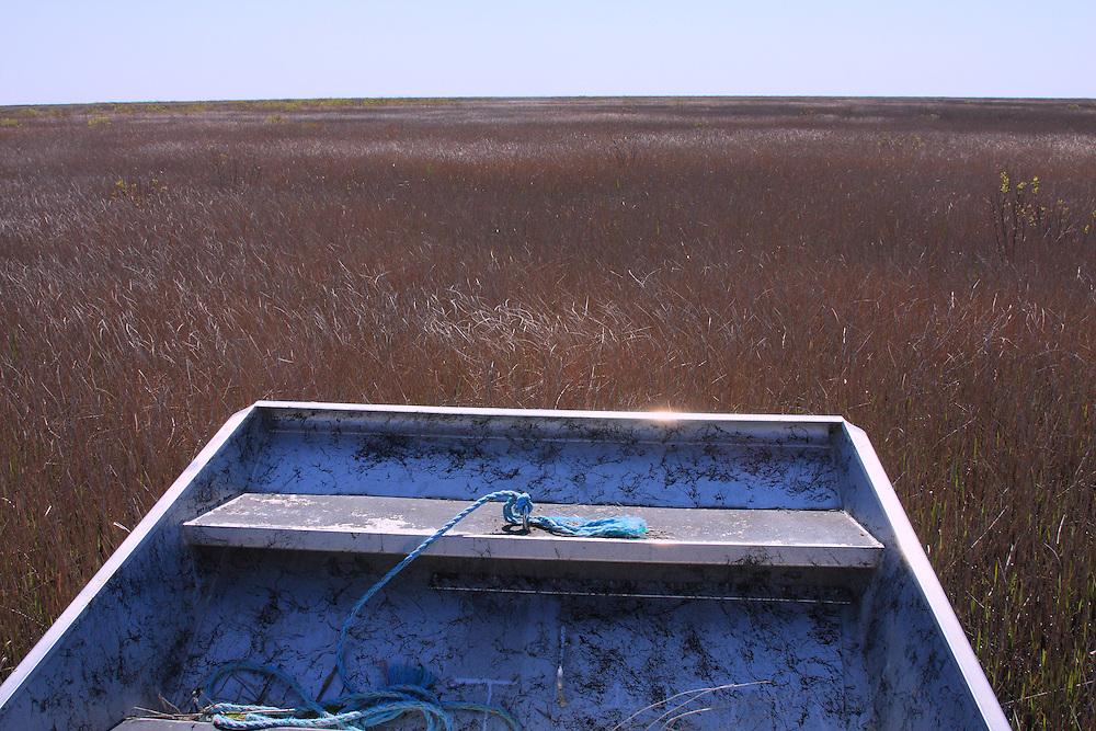 White Lake Wetlands Conservation Area, Vermilion Parish Louisiana,