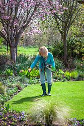 Feeding a lawn by scattering granular lawn food