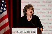 JoAnn Flemming, executive director and chief spokesman of Grassroots America We The People, speaks during the 2014 RedState Gathering at the Worthington Renaissance Hotel in Fort Worth, Texas on August 9, 2014. (Cooper Neill for The Texas Tribune)