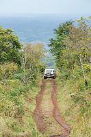 Driving the narrow track to Mount Gorogosa, Gorongosa Mountain, Inhambane Province, Mozambique