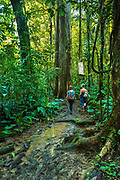 Tourists hike a trail through the rainforest at the Tirimbina Biological Reserve.  The reserve is an educational, scientific, and ecotourism destination that protects 750 acres of rainforest in the Sarapiqui region of Costa Rica.