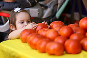 A young girl looks at locally grown tomatoes on display at the Farmers Market along Main Street in downtown Greenville, South Carolina.