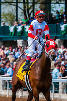 Jockey Javier Castellano riding U.S.S. Boxer at Keeneland Racecourse, Lexington, Kentucky USA.. He is a jockey in American Thoroughbred horse racing from Venezuela.