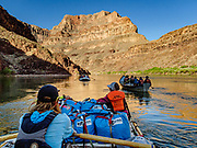 Day 16 of 16 days rafting 226 miles down the Colorado River in Grand Canyon National Park, Arizona, USA. For this photo's licensing options, please inquire at PhotoSeek.com.