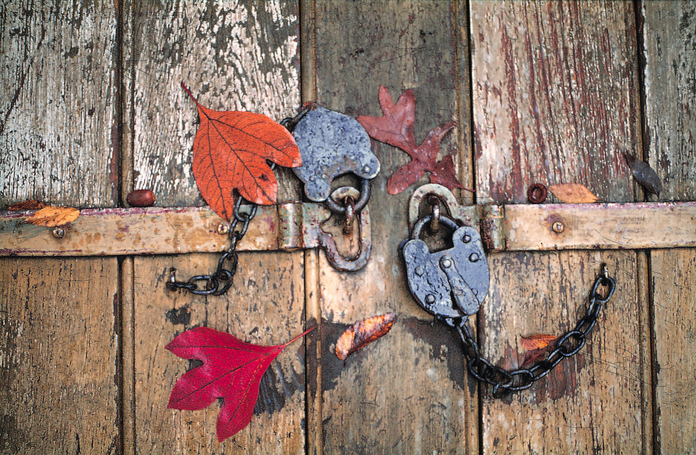 Autumn leaves cover two old locks that secure an old door in Colonial Williamsburg, Virginia.