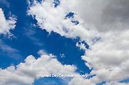 63891-02503 Cumulus clouds in blue sky, Marion Co., IL