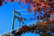 USA, Oregon, Portland, Cathedral Park, St. John's Bridge.