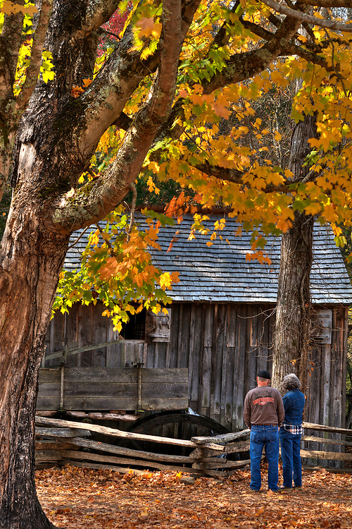 A splash of autumn colors at the Cable Mill in Cades Cove in the Great Smoky Mountains National Park in Gatlinburg, TN on Sunday, November 6, 2016. Copyright 2016 Jason Barnette