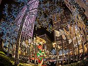 Rockefeller Center Christmas Tree, NYC