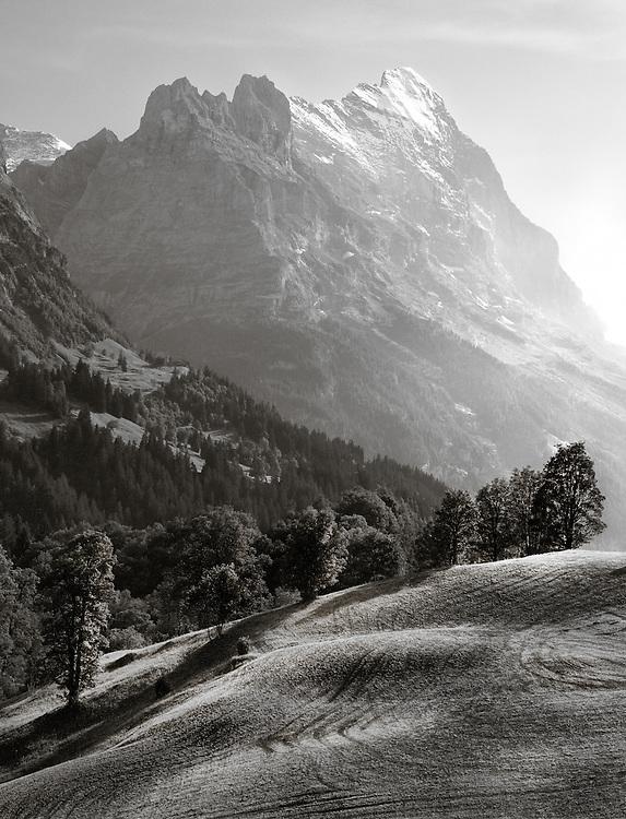 Switzerland - Eiger view from Scheidegg