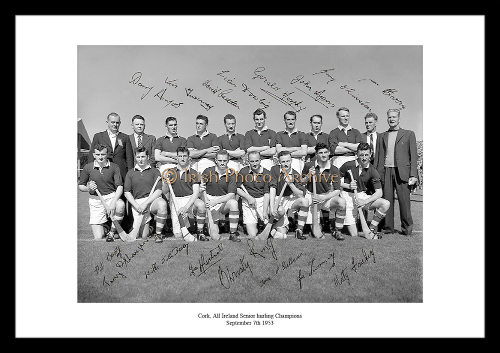 This great shot of the All Ireland Senior hurling Champions is the perfect gift idea for someone who is interested in Irish Hurling or sports in Ireland.