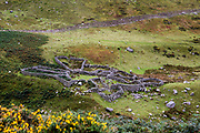 An ancient sheep pen, A good example of a sheep pen that Welsh farmers used around 1700AD. Abergwesyn common, the National Trust in the Carneddau, Gwynedd, North Wales.