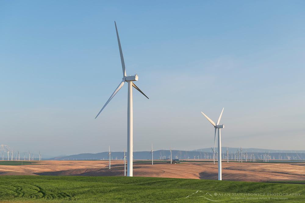 Wind Turbines on Columbia Plateau near Wasco Oregon
