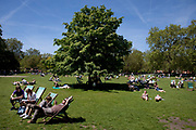 People lying on the grass and sitting on deck chairs in the sun at St James's Park, central London. This park, near to Buckingham Palace is one of the Royal Parks and is a huge draw for tourists.