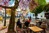 People having a drink in a small square, Placeta de Aliatar, Granada, Granada Province, Andalusia, Spain.