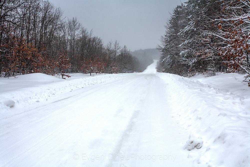 Winter road in Strandzha Mountain