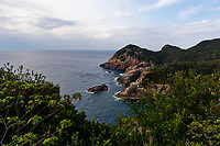 """Cape Ashizuri is at the southernmost tip of Shikoku. The observatory views give visitors a perception of just how round the earth is. Standing on the edge of the cliffs is Cape Ashizuri Lighthouse, one of the largest lighthouses in Japan - and the symbol of the cape. Along with an abundance of subtropical plants in the area, there are many varieties of camellia that grow here, which gives the place its nickname """"Cape Camellia.""""The waves are powerful around the cape and the area west of Ashizuri is considered a prime surf fishing spot. At night, Ashizuri is a fine stargazing territory, since there are no lights to obscure the sky."""