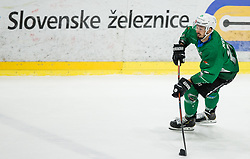 Gregor Koblar of SZ Olimpija during ice hockey match between HK SZ Olimpija and WSV Sterzing Broncos Weihenstephan (ITA) in Round #12 of AHL - Alps Hockey League 2018/19, on October 30, 2018, in Hala Tivoli, Ljubljana, Slovenia. Photo by Vid Ponikvar / Sportida