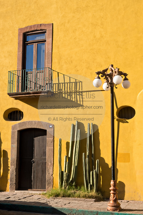 Mexican fencepost cactus grows along the Aranzazu Chapel and San Francisco Convent in the Plaza de Aranzazu in the state capital of San Luis Potosi, Mexico. The chapel and convent was built between 1749 and 1760 and features Churrigueresque details and tiled domes.