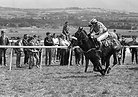 Punchestown Racecourse, Punchestown, Kildare, circa April 1986 (Part of the Independent Newspapers Ireland/NLI Collection).