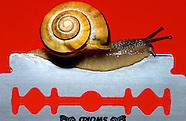 FEATURE: Damn Rush - Snails World