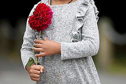 March 17, 2019 - Christchurch, New Zealand - A little girl hold a flower as she attempts to place it at a memorial as a tribute to victims of the mosque attacks outside the Masjid Al Noor mosque in Christchurch on March 16, 2019. At least 49 people dead and more than 40 people injured following attacks on two mosques in  Christchurch. The national security threat level has been increased from low to high for the first time in New Zealand's history after this attack. (Credit Image: © Sanka Vidanagama/NurPhoto via ZUMA Press)