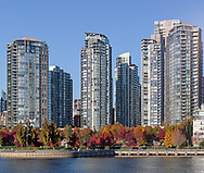 Condo Towers in Vancouver's Downtown with some fall foliage in George Wainborn Park.  Photographed from across False Creek on Granville Island in Vancouver, British Columbia, Canada.