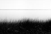 Grass and horizon