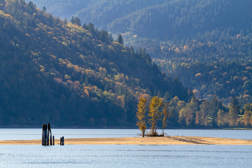 Fall foliage on a small island in Harrison Bay at Kilby Provincial Park, British Columbia, Canada.