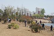 Rizhao construction company Dongyi Town, urban planning, Shandong, China