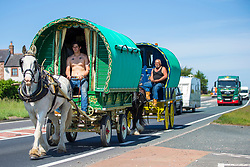 © Licensed to London News Pictures. 07/06/2018. Appleby UK. Travellers make their way along the A66 in Cumbria on route to the Appleby Horse Fair in Appleby. The Appleby Horse fair is the biggest traditional Gypsy fair in Europe attracting 10,000 Gypsies & Travellers & 30,000 visitors. Photo credit: Andrew McCaren/LNP