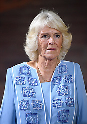 The Duchess of Cornwall attends a Commonwealth reception at the British High Commissioner's residence in Abuja, Nigeria, on day seven of the royal trip to west Africa.