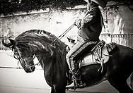 Old Spanish Days - Fiesta Historical Parade in Santa Barbara, California. Radial