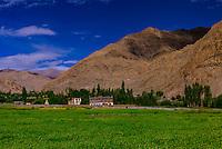 Near Karu, Leh Valley,  Ladakh; Jammu and Kashmir state, India.