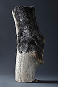 partly burned piece of natural wood