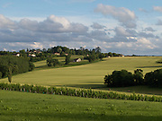 The late afternoon sun brought out the colour of the rolling fields of Gers in the Gascony area of France. The country near Montreal du Gers is a wheat and dairy with some wine growing areas where the grapes are used to produce Armagnac.