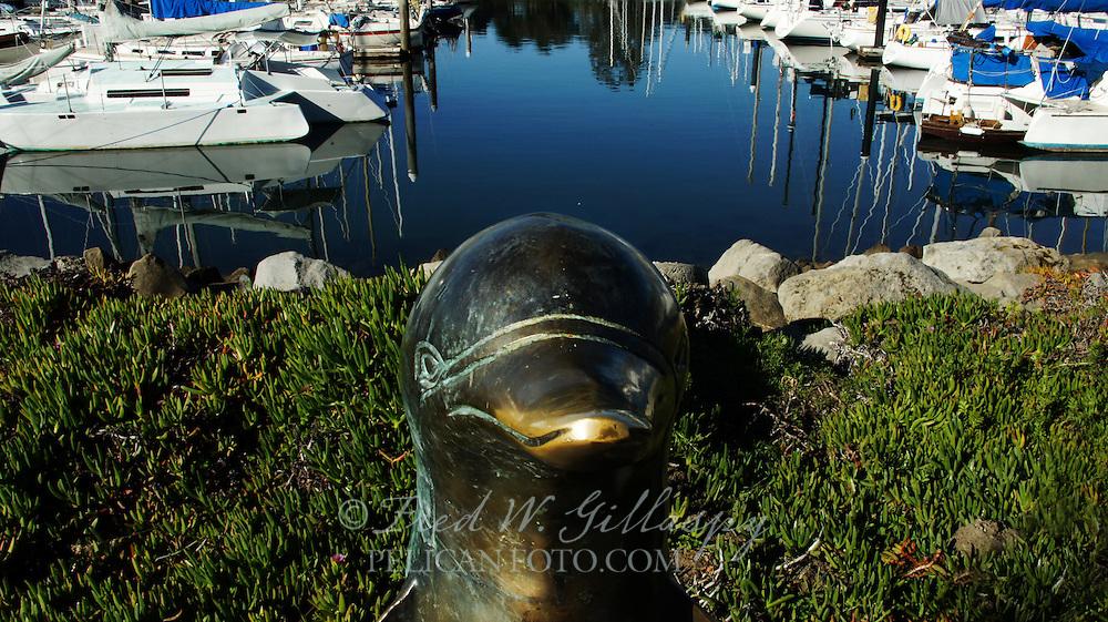 Santa Cruz Harbor, Santa Cruz CA