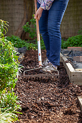 Maintaining paths in a vegetable garden by topping up with fresh bark chippings to suppress weeds