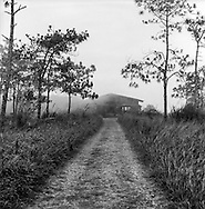 Path leading to abandoned building disappearing into mist, Bokor Hill Station, Preah Monivong National Park, Bokor, Kampot, Cambodia, 2005, Southeast Asia